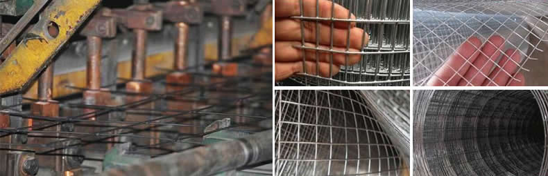 Welded Wire Mesh suppliers price china